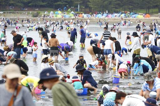 Clam digging in Japan