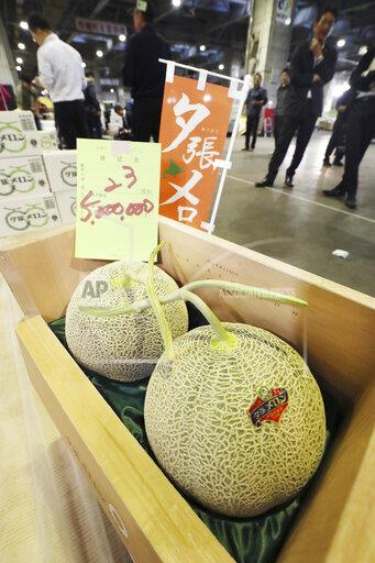 Yubari melon auctioned at highest price in Hokkaido, Japan