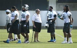 Panthers minicamp