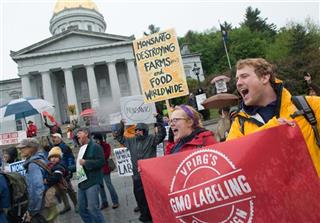 Marching Against Monsanto