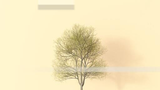 3D rendering, Single bare tree on yellow background