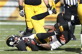 Ben Roethlisberger, Geno Atkins
