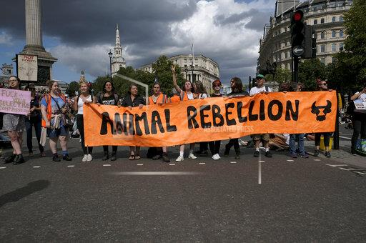 Animal Rights activists protest in London, UK - 17 Aug 2019