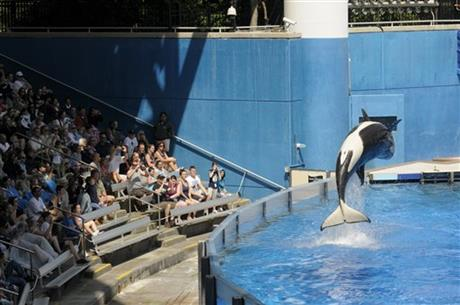 Seaworld Entertainment-IPO