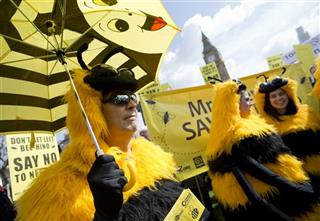 Britain Bee Protest