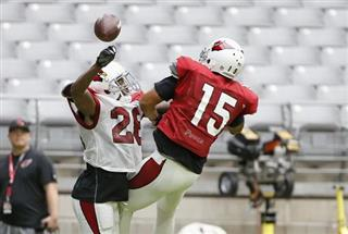 Brandon Williams, Michael Floyd