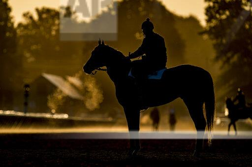 Horse Racing 2019: Travers Stakes Day