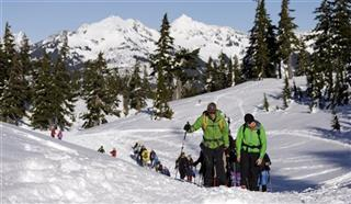 Surviving Avalanches Teens