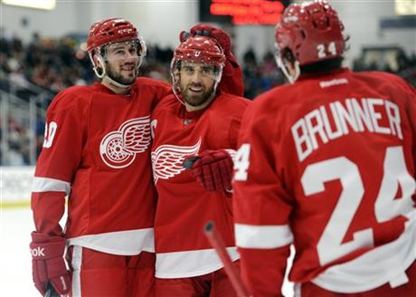 Red Wings Scrimmage Hockey
