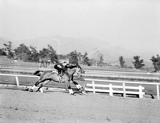 Associated Press Sports California United States Racing (animals) SEABISCUIT