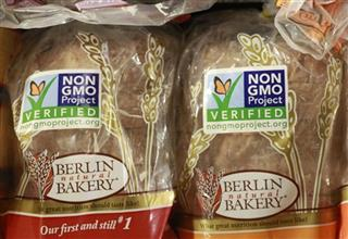 Genetically Modified Foods News Guide