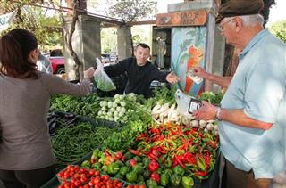 Farmers Market Surge