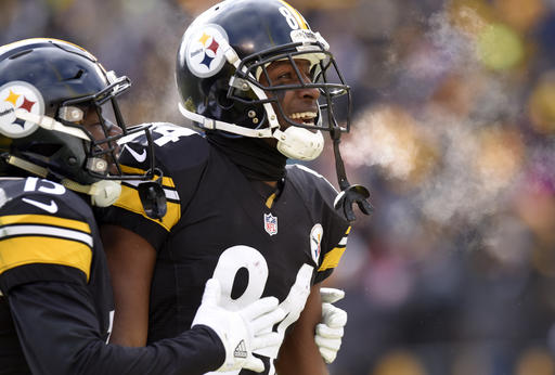 Antonio Brown, DeMarcus Ayers