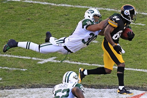 Antonio Brown,  LaRon Landry