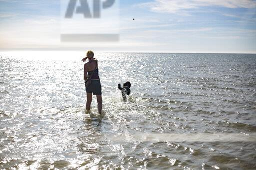 France, back view of woman throwing ball for her dog at the sea