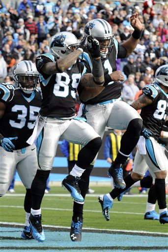 Steve Smith, Cam Newton