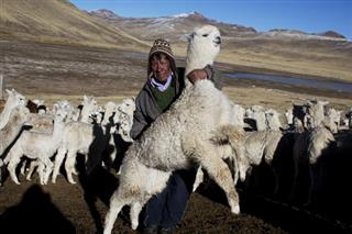 Peru Harsh Andean Winter Photo Gallery