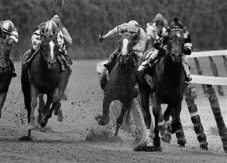 Triple Crown Not Quite Horse Racing