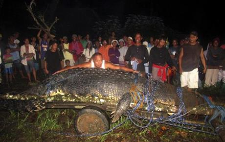 Philippines Giant Crocodile