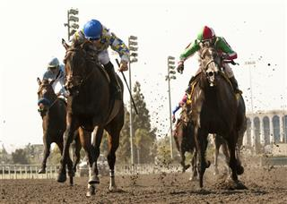 Hollywood Park Horse Racing