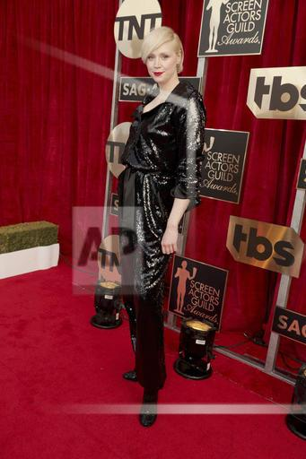 23rd Annual SAG Awards