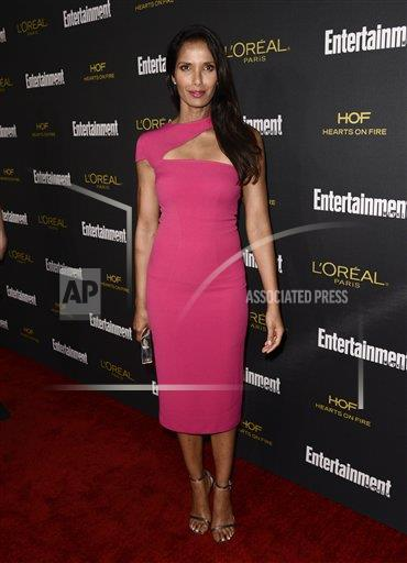 inVision Dan Steinberg/Invision/AP a ENT CPAENT CA USA INVL 2014 Entertainment Weekly Pre-Emmy Party - Red Carpet