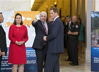 Prince Harry, John McCain, Guy Willoughby, Fiona Willoughby