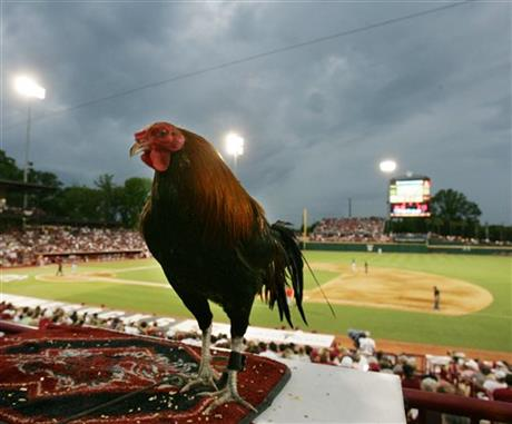Liberty-South Carolina NCAA suspended by rain
