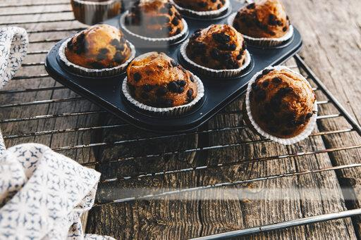 Home-baked muffins with chocolate chips in muffin tray on cooling grid