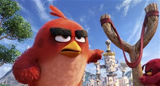 """""""The Angry Birds Movie"""""""