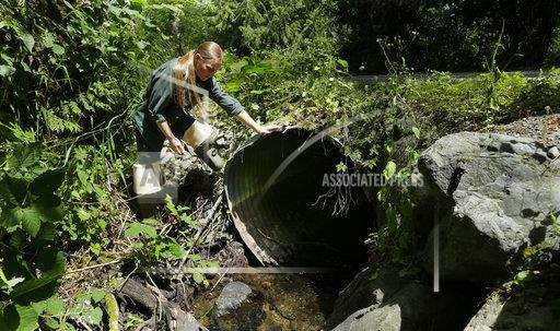 Salmon Culverts Lawsuit