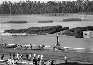 Hollywood Park Closing Horse Racing