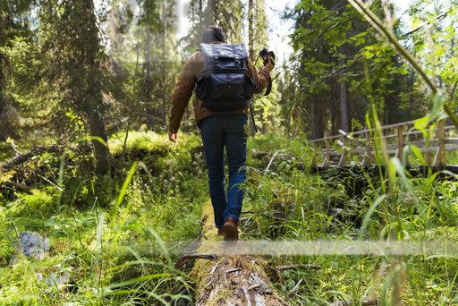 Finland, Lapland, man walking on log in forest