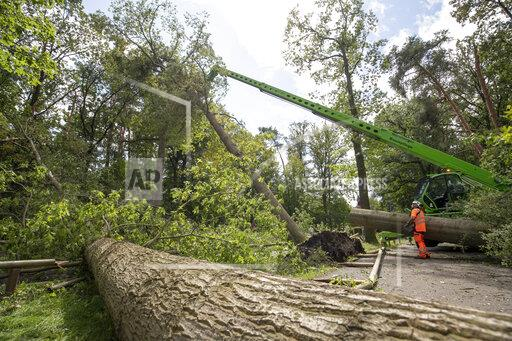 Clean-up work after thunderstorms in Franconia
