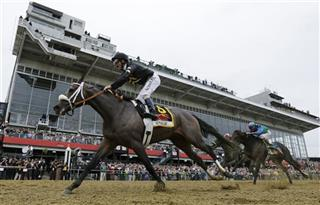 Preakness Horse Racing