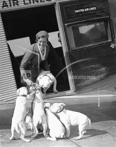 Watchf Associated Press Domestic News  California United States APHS229489 Presidential Pet General Grant 1933