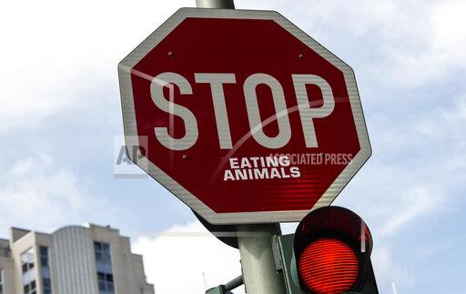 Protest against meat consumption