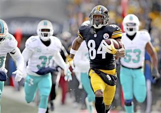Dolphins Steelers Football
