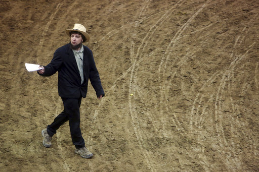 Amish or not, sellers and buyers pony up at horse auction