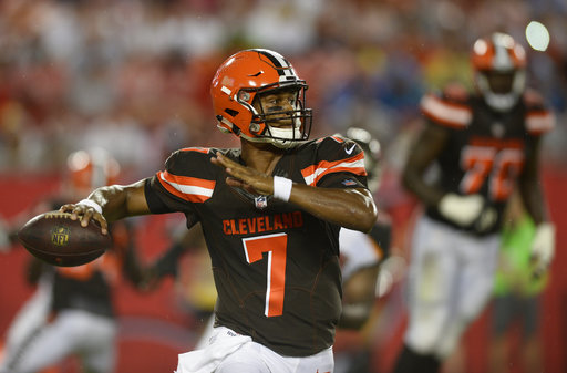 AFC North Preview Football